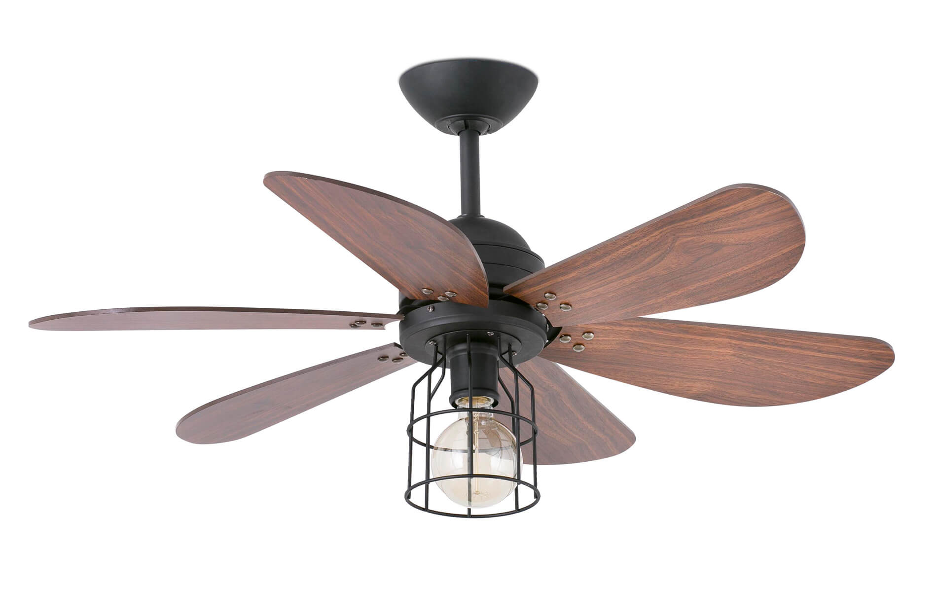 More information of Faro CHICAGO ceiling fan.